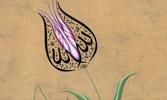 Üsküdarlı Ali Efendi