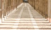Die Sahaba, denen das Paradies verkündet wurde: Al-Aschara al-Mubaschschara (Die Erfreuten Zehn)